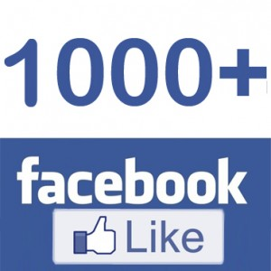 Trucker LT 1000+ Like facebooke